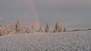 foto-winterlandschaft